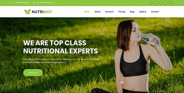 Nutrimof - Nutritional & Health WordPress Theme