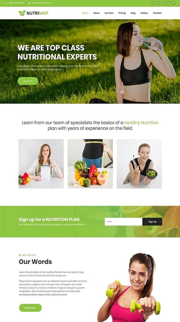 Nutrimof - Nutritional & Health Template
